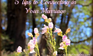 5 Tips to Connecting in Your Marriage {Because Maintenance is More Affordable Than Neglect}