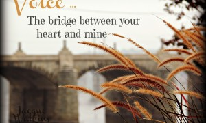Your Voice is the Bridge From Your Heart to Mine