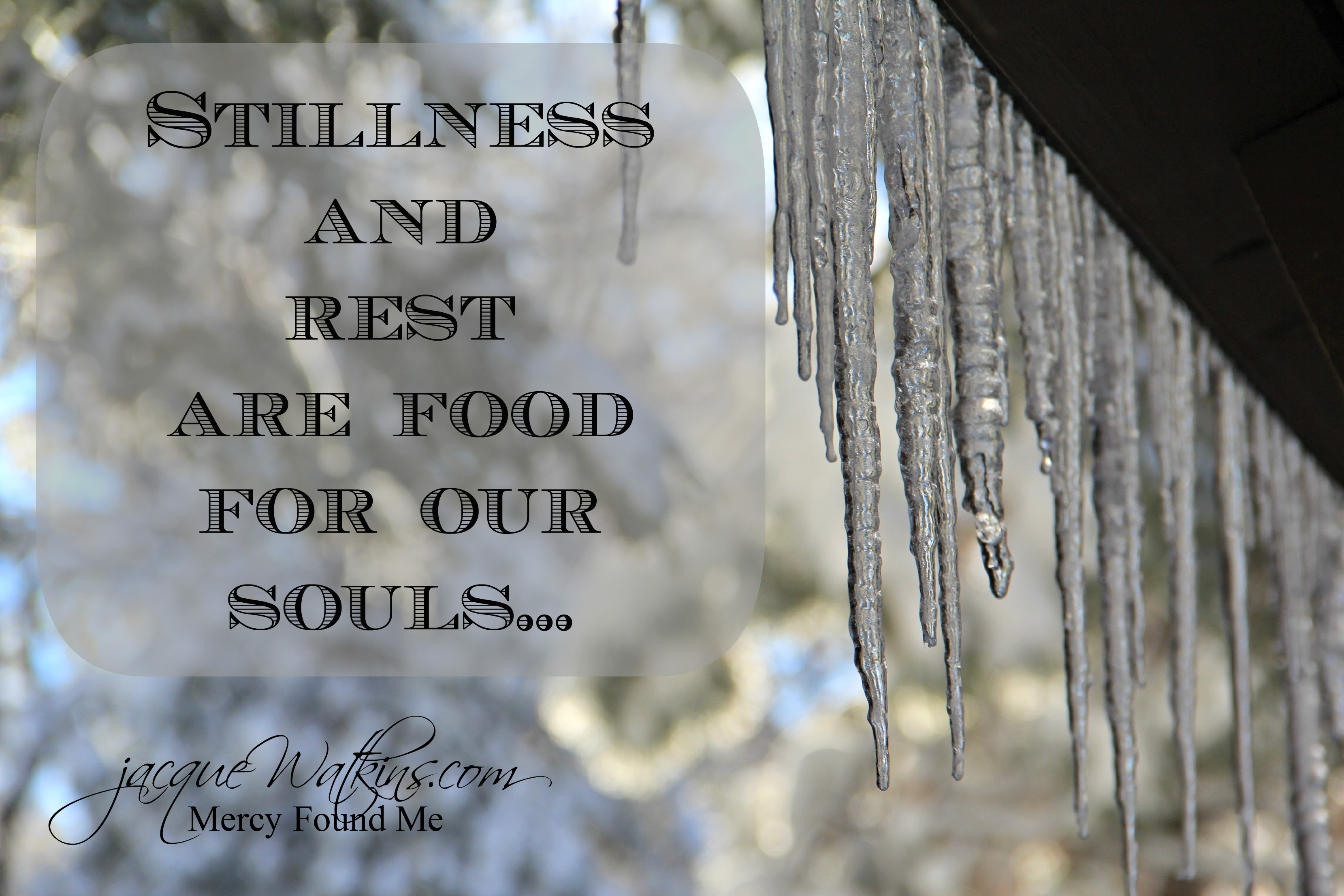 Stillness and Rest {Food For Our Souls}