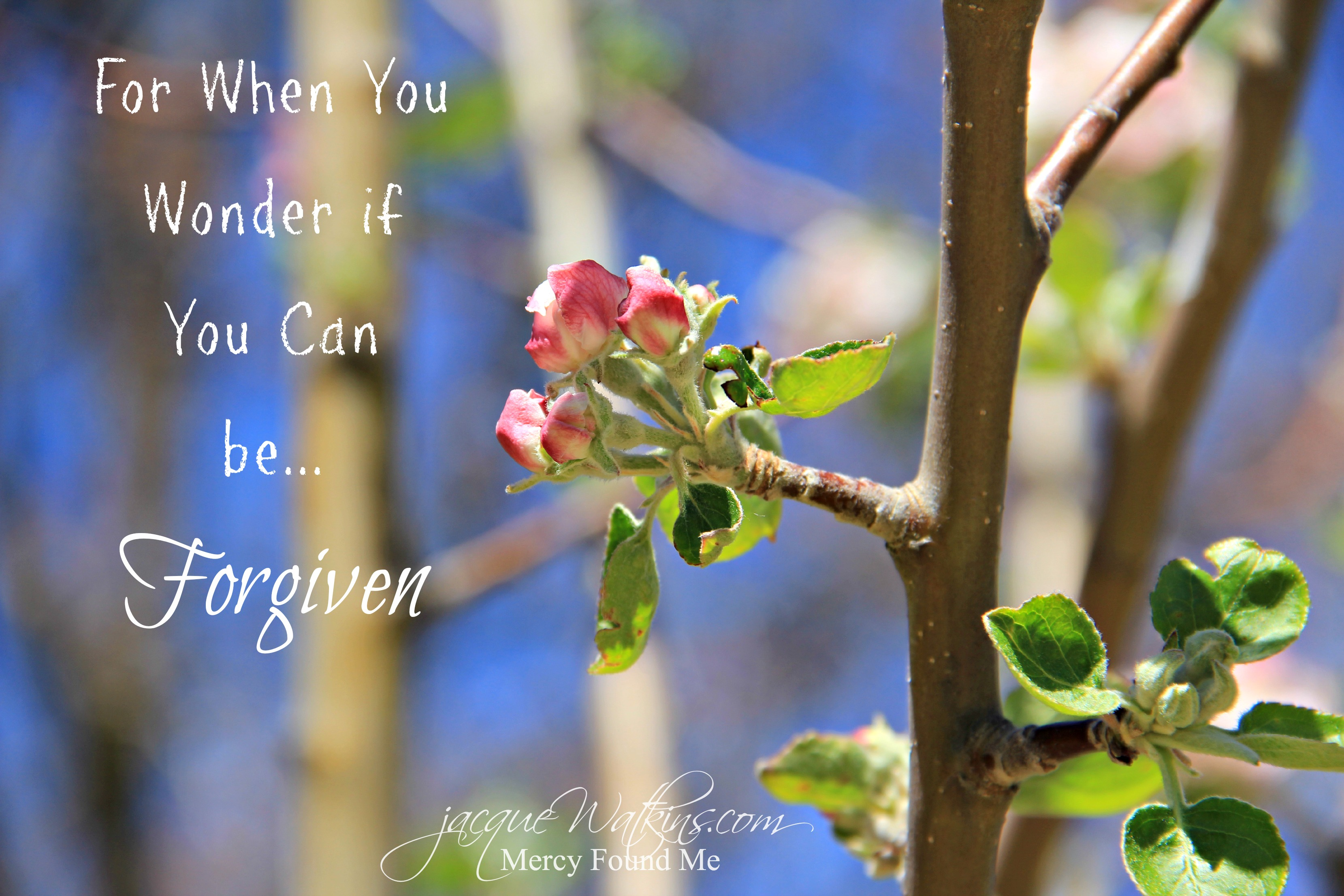 Mended :: For When You Wonder if You Can Be Forgiven {Week 5}
