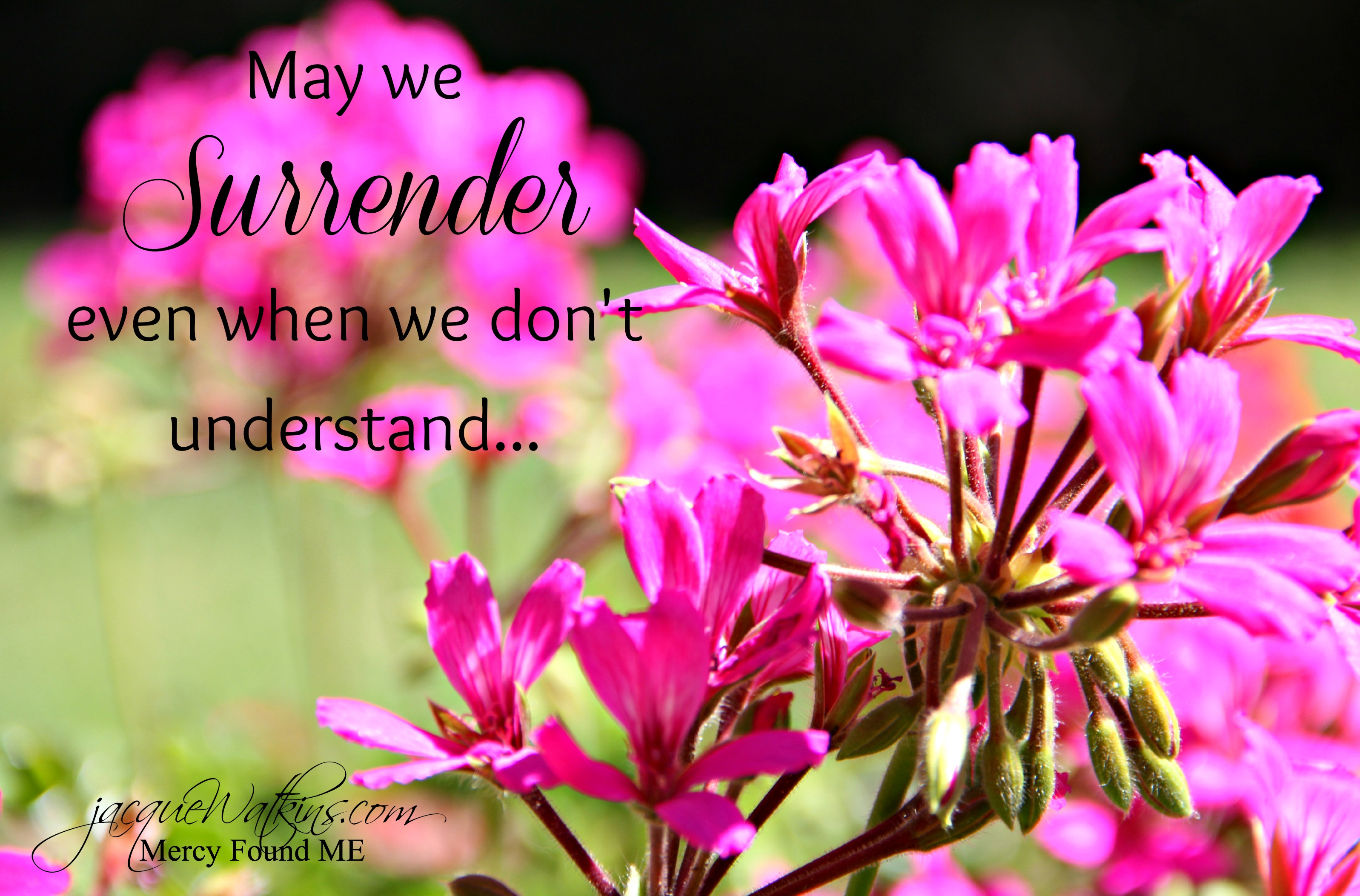 Mended :: May We Surrender in Our Grief {Week 9}