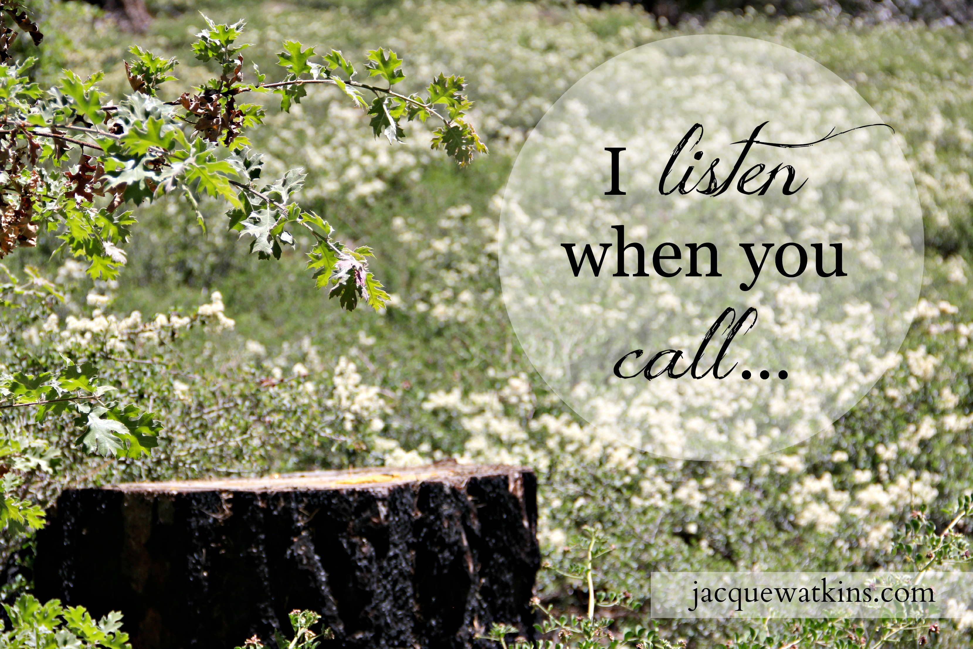 I Listen When You Call {Letters from God}