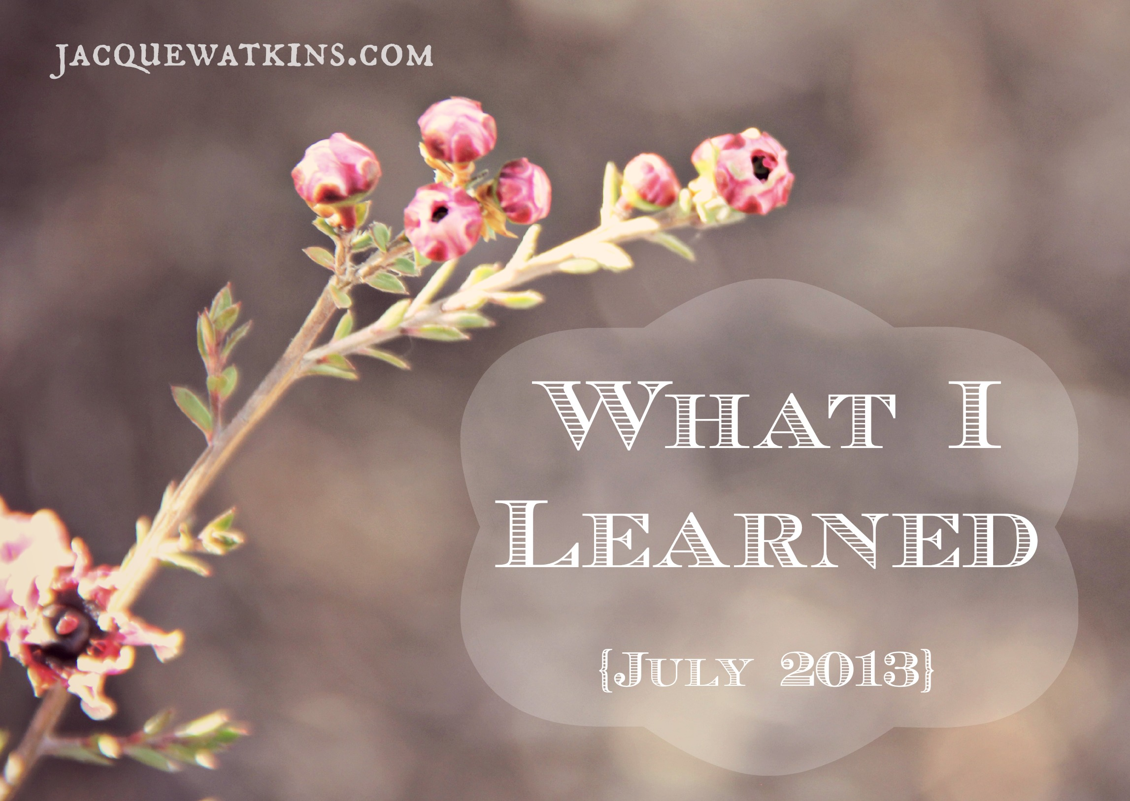 What I Learned {July 2013}