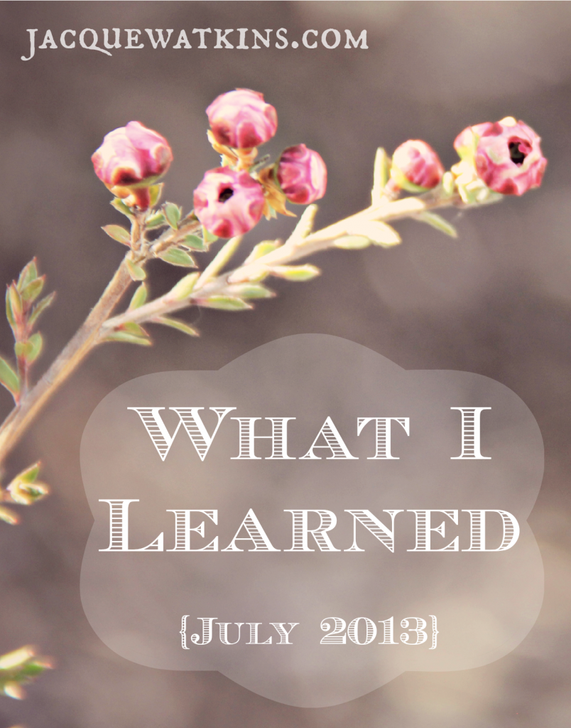 What I Learned July 2013vert