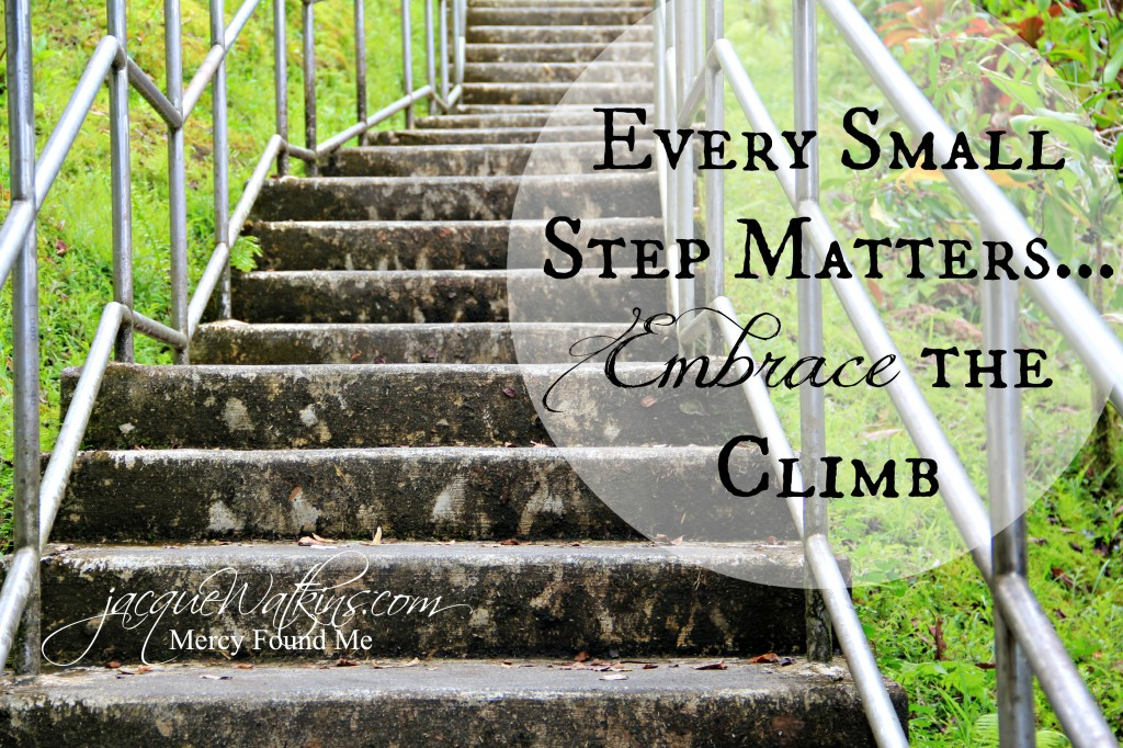 Every Small Step Matters, Embrace the Climb