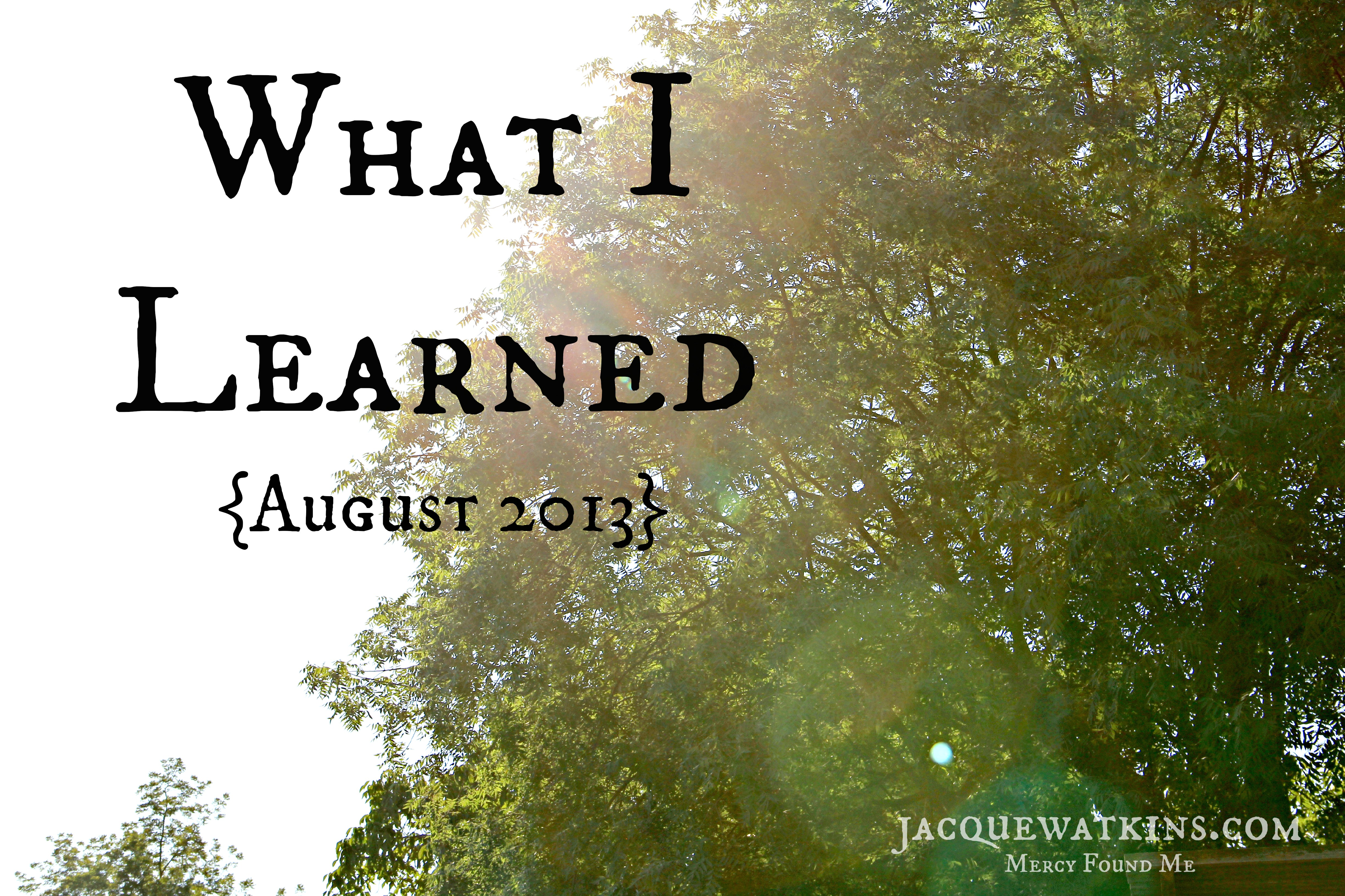 What I Learned {August 2013}