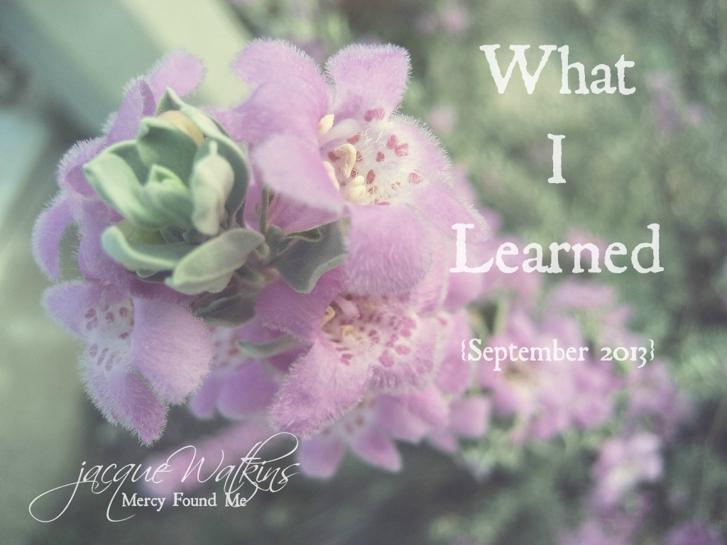 What I Learned {September 2013}