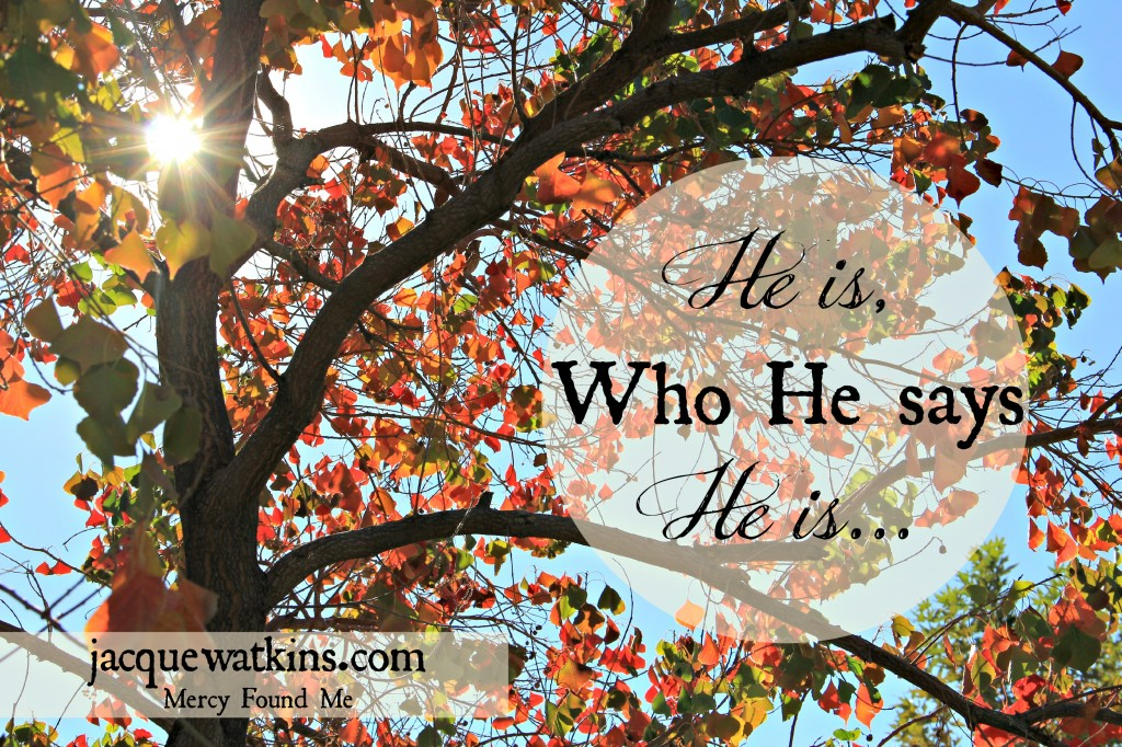 He is Who He Says He is Romans 8 28