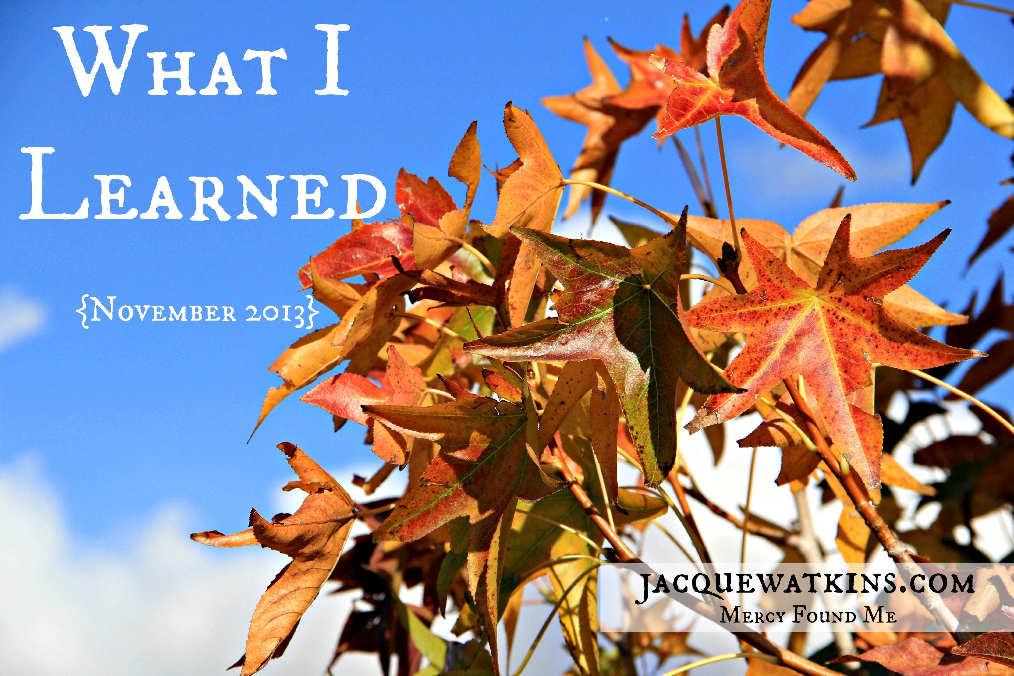 What I Learned {November 2013}