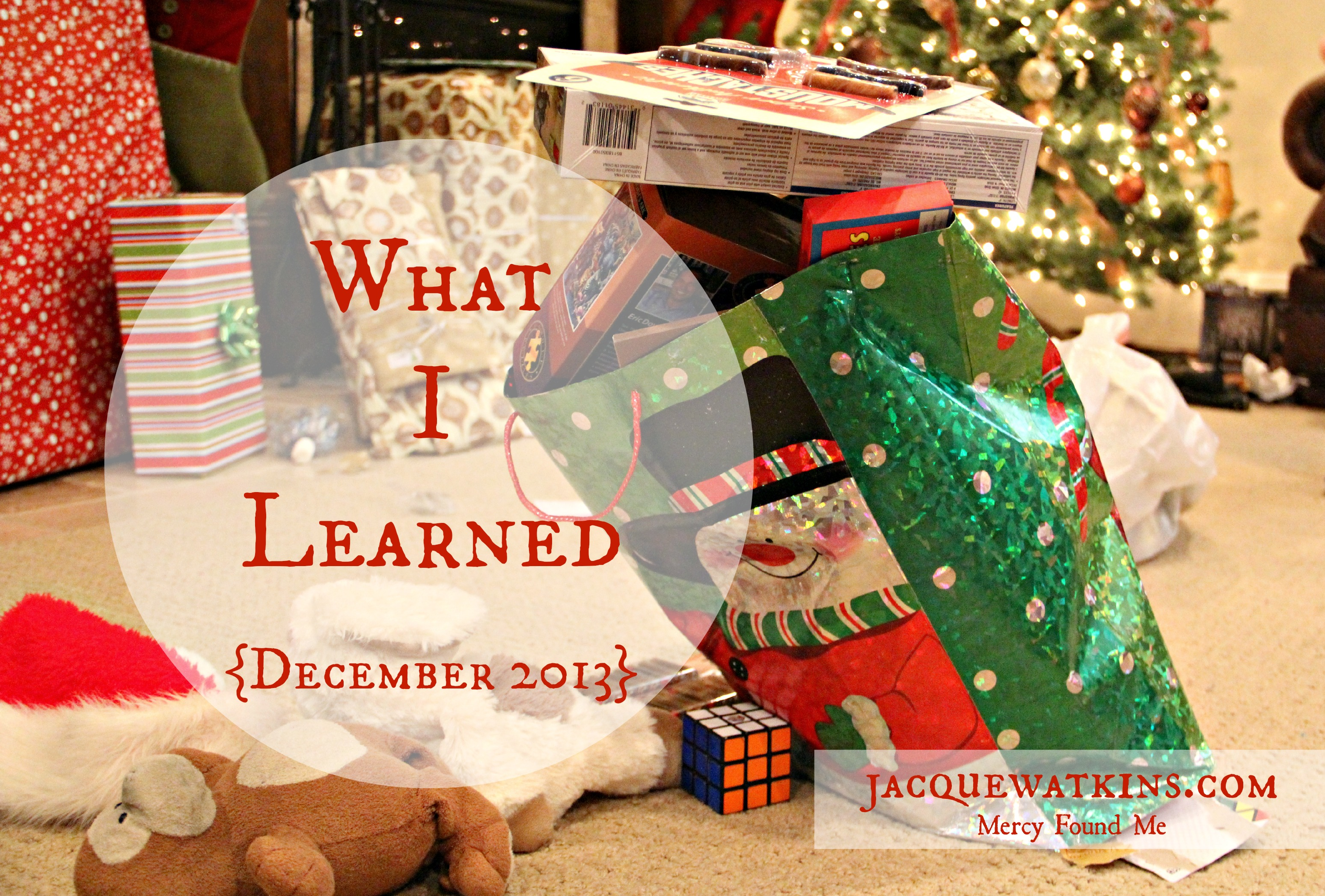 What I Learned {December 2013}
