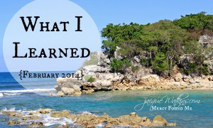 What I Learned {February 2014}