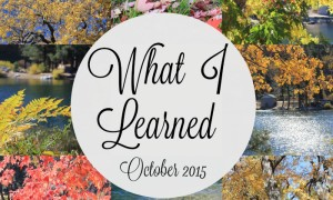 What I Learned {October 2015}