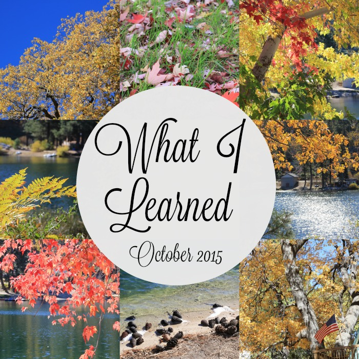 What I Learned Oct 2015 700x700