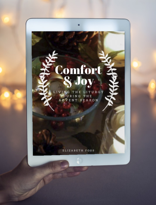 Comfort & Joy Advent Elizabeth Foss
