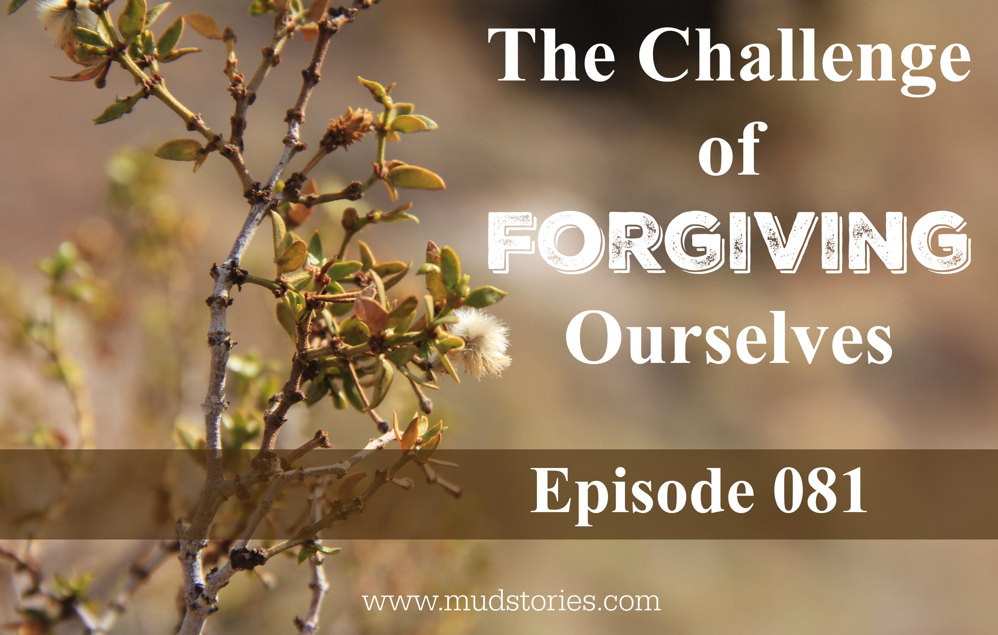 MS 081 The Challenge of Forgiving Ourselves